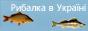 """Рыбалка"""""""