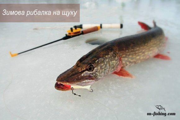 Зимова рибалка на щуку
